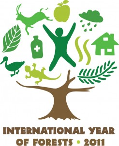 Accelerated loss rates and a few success stories: 2011 is the International Year of Forests