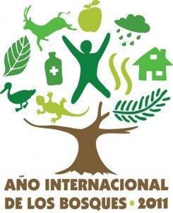 Aceleradas tasas de destrucción y pocas historias exitosas: 2011 Año Internacional de los Bosques