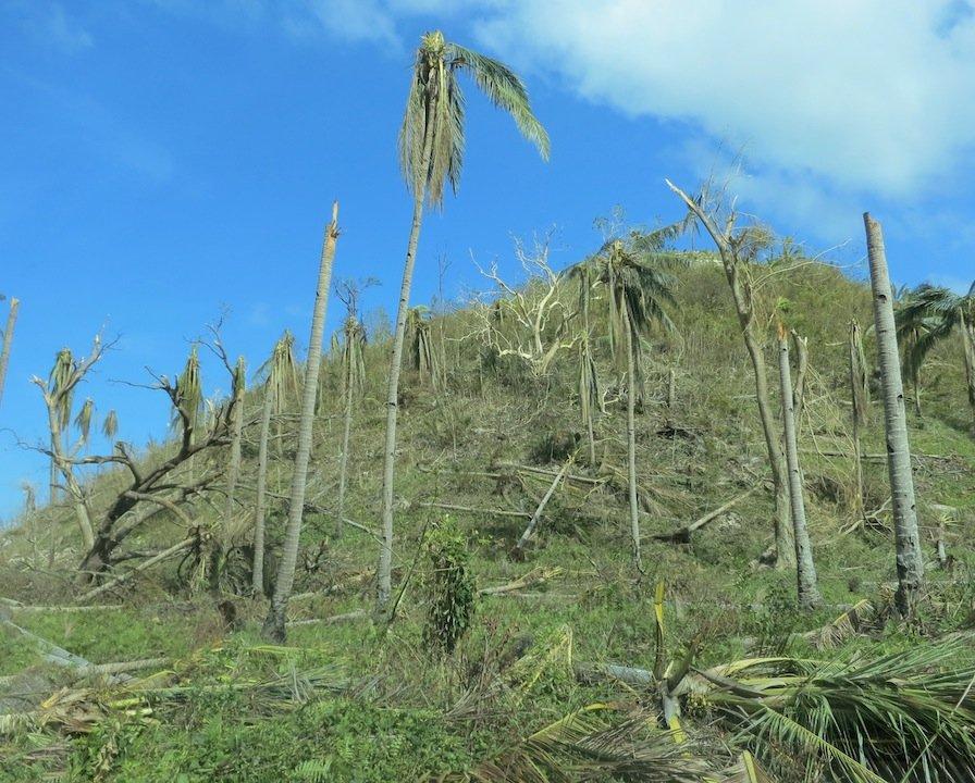 Respuesta colaborativa en la reducci�n del riesgo de desastres ...